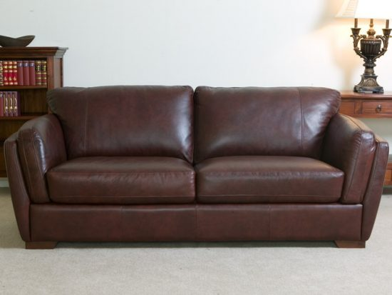leather sofa and dogs