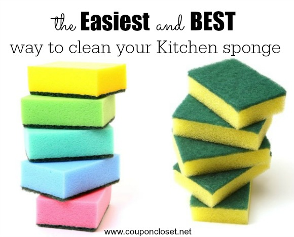 How To Clean Kitchen Sponge In One Easy Step One Crazy Mom
