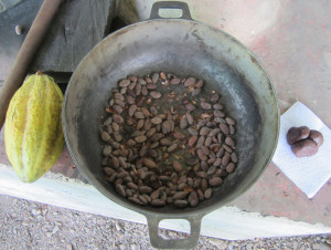 Making Chocolate from Cacao