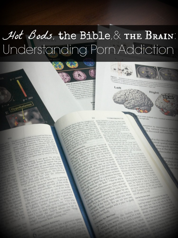 Hot Bods, the Bible, and the Brain