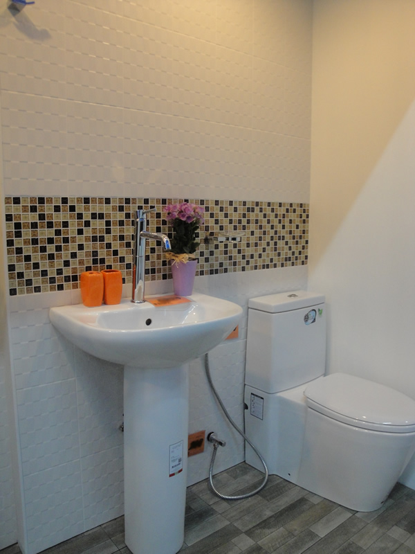 Mosaic tile blends the floor tile with the walls tiles