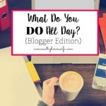 What Do You DO All Day? (Blogger Edition)