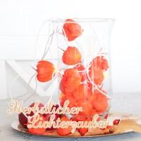 Herbstzauber: Lichterketten mit Lampionblumen