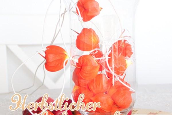 DIY: Herbstlicht - Lichterkette aus Lampionblumen: Auf einem schönen Teller, vielleicht noch mit einzelnen Lampionblumen, Äpfelchen oder Nüssen ist es eine tolle Dekoration bis zur Adventszeit! cozy & cuddly