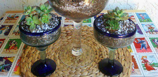 cactus-gardenTRIOfeatured