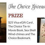 The Choice – Opens February 5th #Giveaway