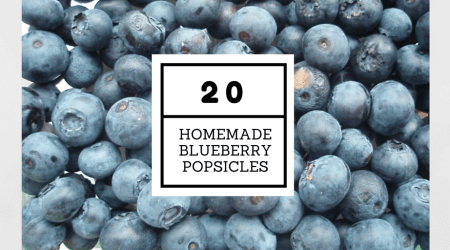 20 Homemade Blueberry Popsicles