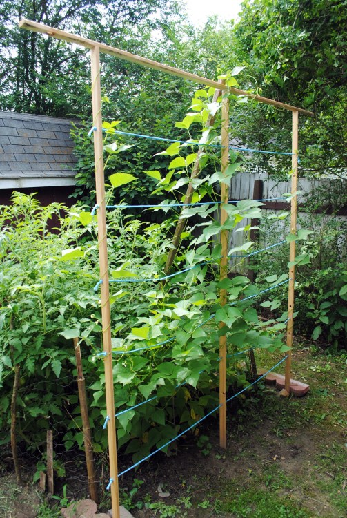 diy garden trellis tutorial final