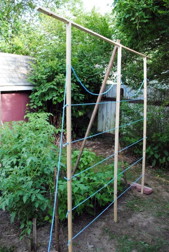 diy garden trellis tutorial in progress