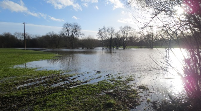 Thames Water Object to Thakeham Homes