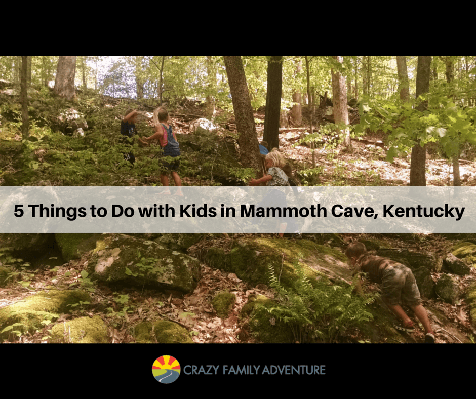 5 Things To Do With Your Kids When Visiting Mammoth Cave Kentucky