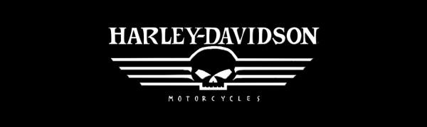 Girl Genius Wallpaper Harley Davidson Skull Logo History Amp Bonus Wallpaper