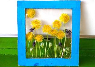 tablou din flori naturale presate - flori de papadie