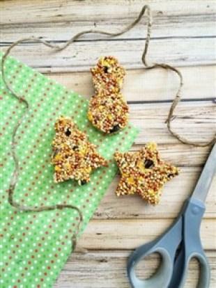 Hranitoare pentru pasari in forme de biscuiti, foarte usor de facut - pasul 5