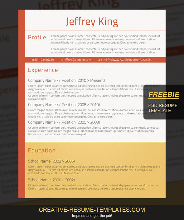 Free Professional Resume Template To Download - Free Resume Templates Australia Download