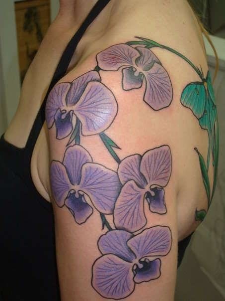 Superb Wallpapers With Quotes For Facebook Purple Orchid Tattoos Creativefan