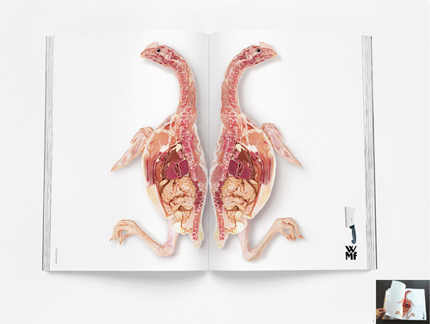 40 Amazingly Creative Double Page Magazine Ads Guerrilla Marketing Photo