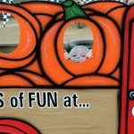 Tips For Visiting The Pumpkin Patch