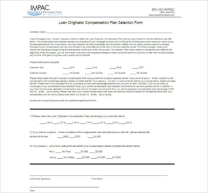 10+ Compensation Plan Template Free Word, PDF Documents