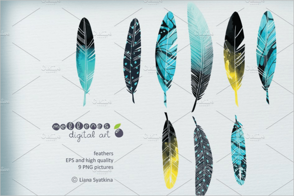 Peacock Feather Patterns Vector Free Premium Templates