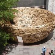 nest-1