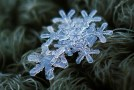 Beautiful Macro Details of Uniquely Beautiful Snowflakes
