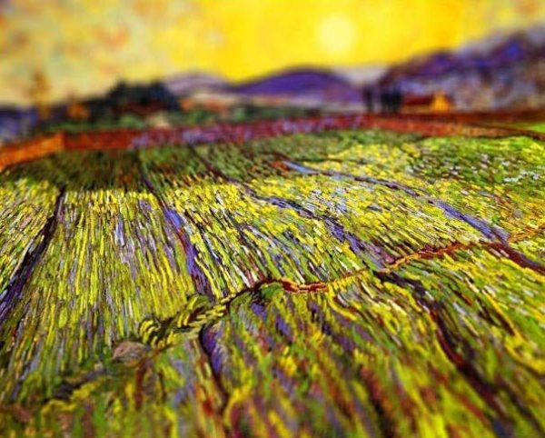 tilt-shift-van-gogh-wheat-field