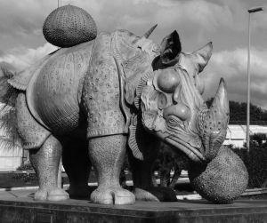 Rinoceronte vestido con puntillas