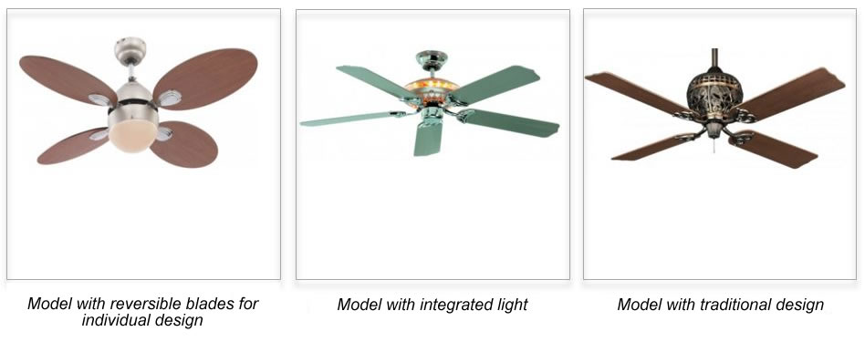 Success story of the ceiling fan