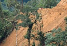 Foto: ODECOFROC / Afrodita construye carretera de acceso en la Cordillera del Cóndor