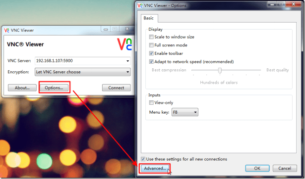 vnc viewer options advanced