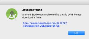 java not found