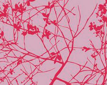 Naturaleza en rojo VIII