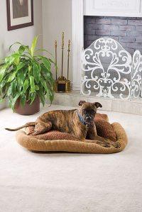 Crochet for Pets: 15 New FREE Animal Crochet Patterns ...