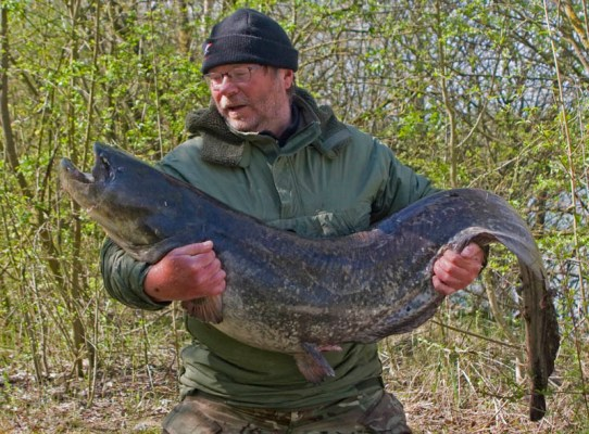 First fish I caught with the ATT system was this 64lb catfish.