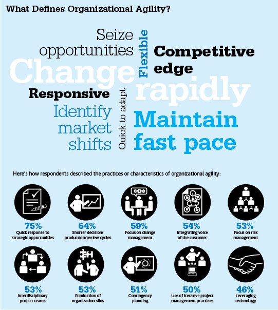 Organizational Agility and How It Can Help Your Business - CrossCap