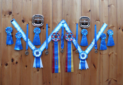 Ribbons from Breed Show at Brookside I & II, 2012