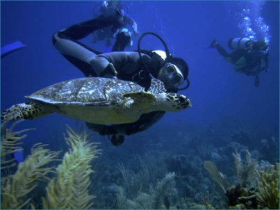Scuba diving in Costa Maya (photo: Costa Maya Tourism Board)