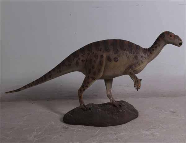 Baby Iguanodont
