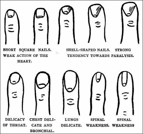 diagram also palm reading chart and meaning on palm reading diagram