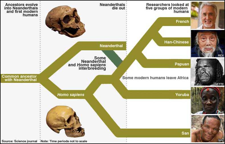 Neanderthals Crystalinks
