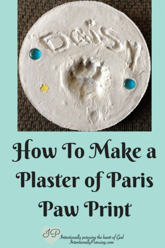How To Make A Plaster Of Paris Paw Print - Crystal Storms