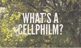 Whats a Cellphilm _ Casey Burkholder