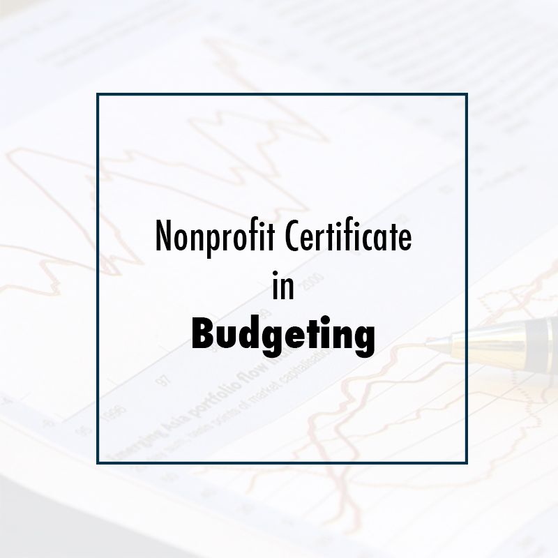 Nonprofit Certificate in Budgeting - CSEA Institute
