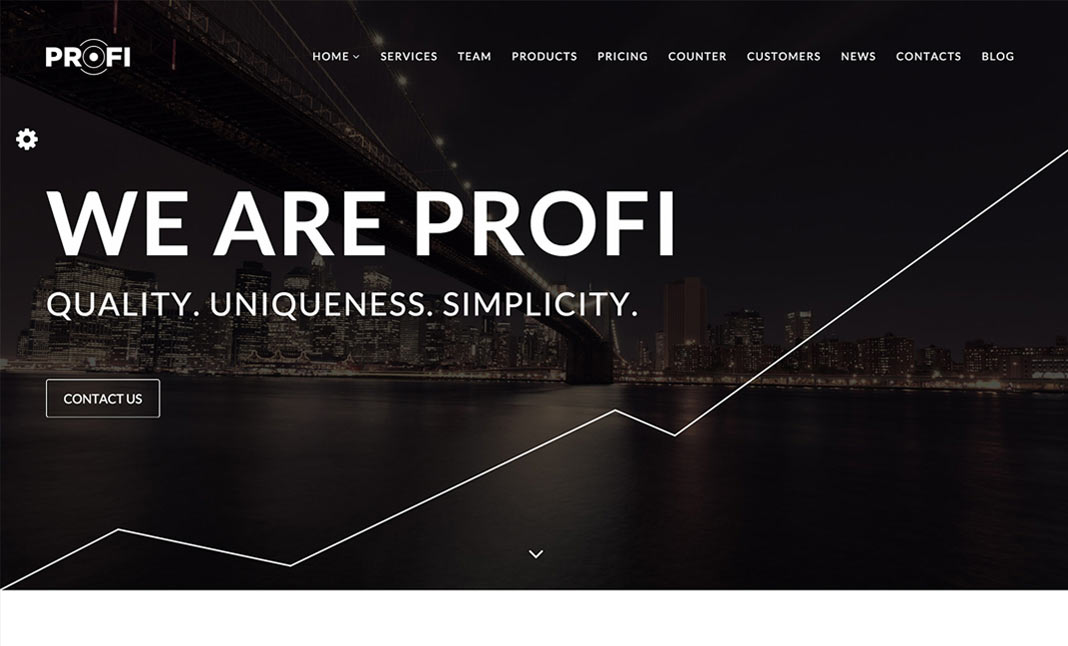 PROFI WordPress Theme designed by ION digital