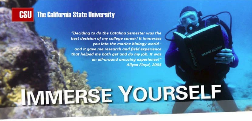 Marine Biology Semester California State University, Northridge - marine biologist job description