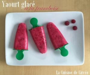 yaourt_glacé_framboise_04