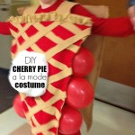 DIY Cherry Pie A La Mode Costume