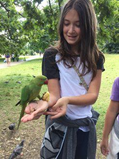 Feeding the birds in Hyde Park
