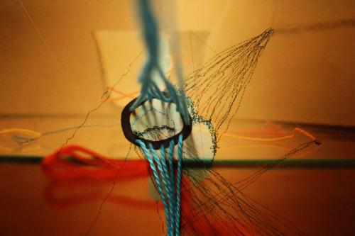 """""""Will"""" 2012 Digital C-Print"""